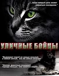 """Street Fighters"" – first ever movie about stray animals shot in Azerbaijan"