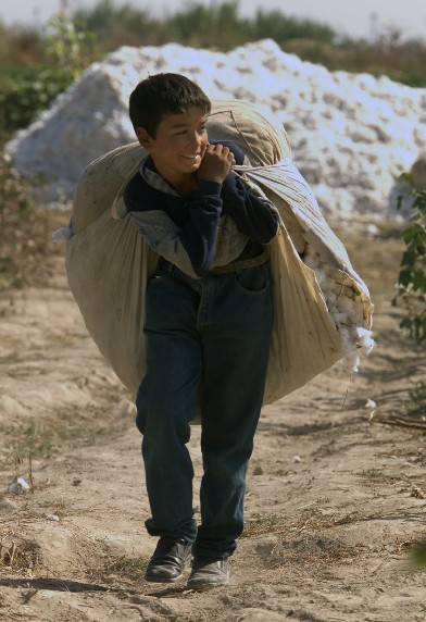 child labor in uzbekistan The ilo's report on measures against child labor and forced labor during the 2016 cotton harvest in uzbekistan notes that child labor  labor policies and practices.